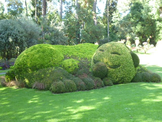 Sortie au jardin des plantes ecole st michel la remaudiere for Au jardin des plantes chambery