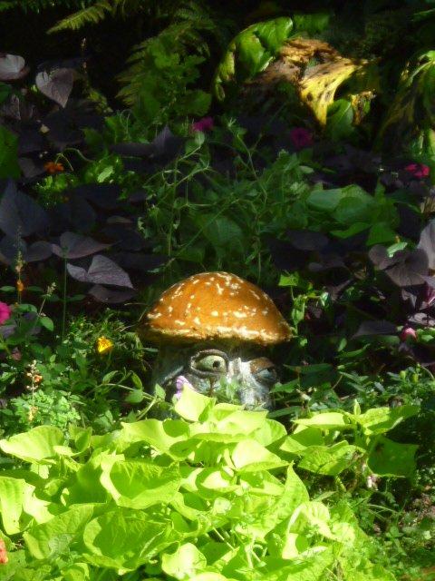 jardin-des-plantes-21